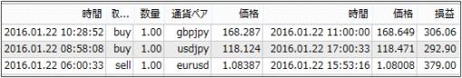 result16012304